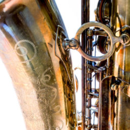 Image for The Free Wind Saxophone