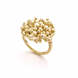 Image for Oogst Ring 'Bessen'